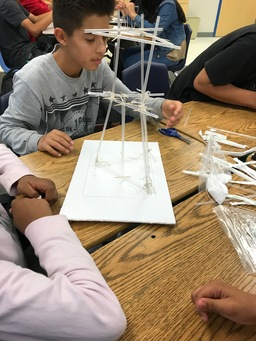 Engineering Principles in Science